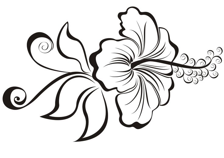 Simple Hibiscus Flower Tattoo: Pictures Of Flower Tattoo Designs