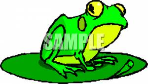 300x170 Picture A Green and Yellow Frog on a Lily Pad