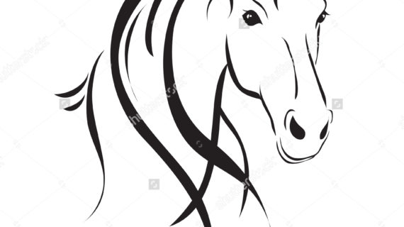 570x320 Simple Line Drawing Of A Horse Easy Horse Drawings Simple Horse