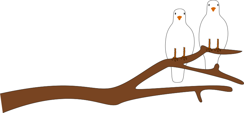 800x373 Free Two Doves On A Branch Clip Art
