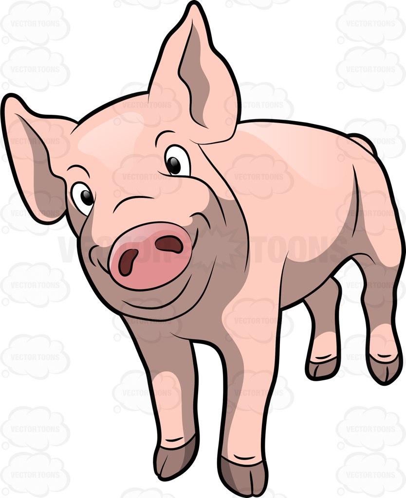 834x1024 A Cute Pig Smiling Cartoon Clipart