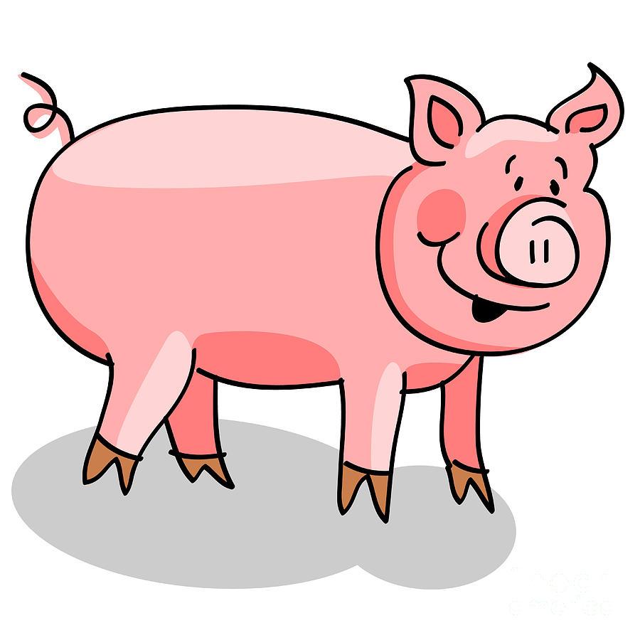 900x900 Pig Cartoon On White Digital Art By Sylvie Bouchard