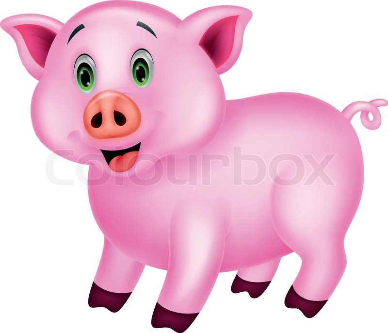 800x686 Vector Illustration Of Cute Pig Cartoon Stock Vector Colourbox