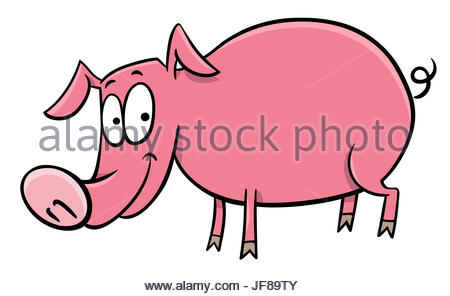 450x296 Pig Or Piglet Cartoon Character Stock Photo, Royalty Free Image