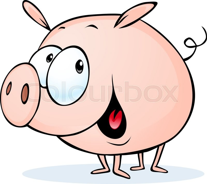 800x710 Funny Pig Cartoon