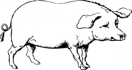 425x227 Pig Clip Art Cartoon Clipart Panda