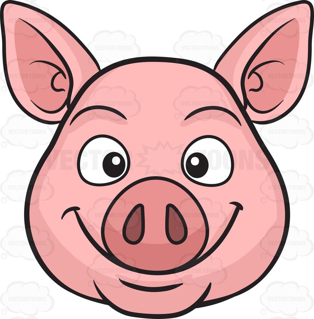 1008x1024 A Smiling Pig