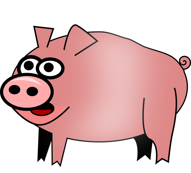 798x720 pig clipart no color