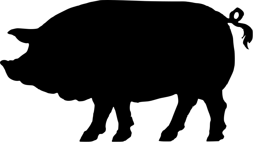 851x479 Shadow Clipart Pig