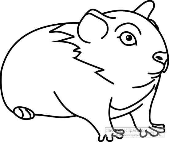 550x462 Pig Outline Clipart