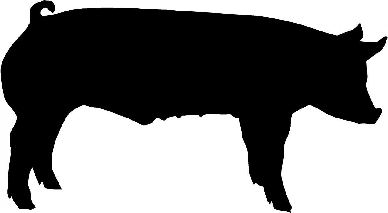 1280x705 Shadow Clipart Pig