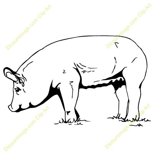 500x500 Pig Pen Clipart