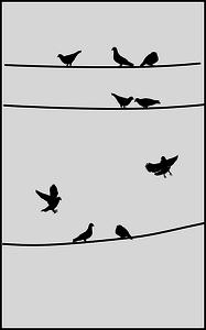 Pigeons Clipart