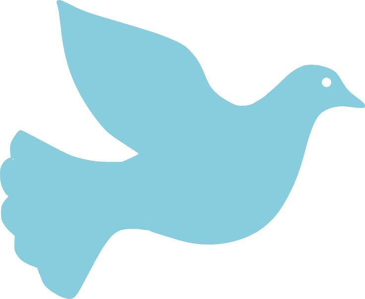 736x602 Best Peace Pigeon Ideas Peace Bird, Peace Dove