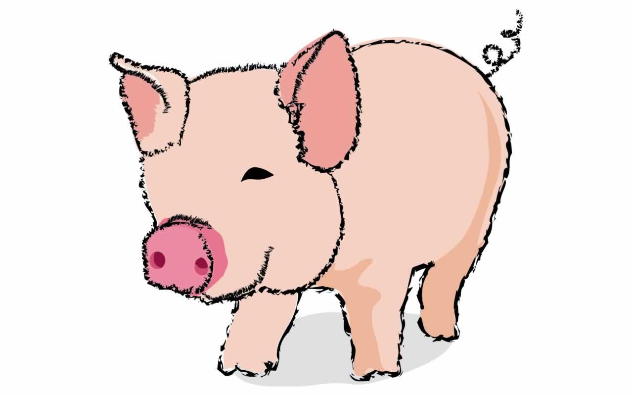 1280x800 Cartoon Pigs Pics