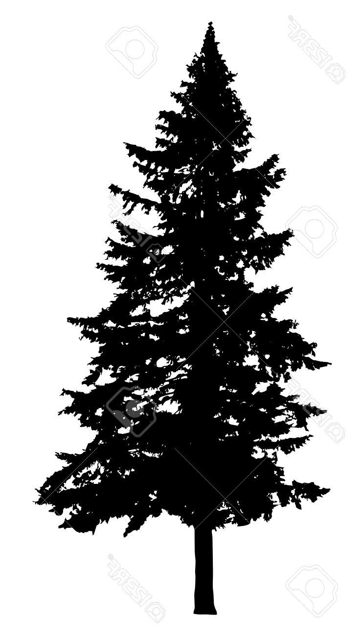 Pine tree vector. Black and white free