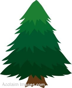 245x300 Clipart Of A Cartoon Pinetree