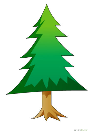367x549 Drawing Pine Tree Clipart