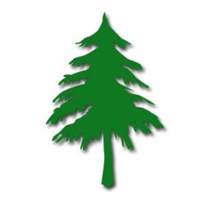 300x300 Pine tree clipart free images 5