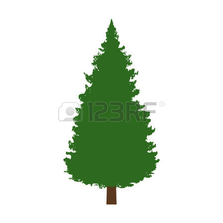 450x450 Evergreen Tree Clip Art Many Interesting Cliparts