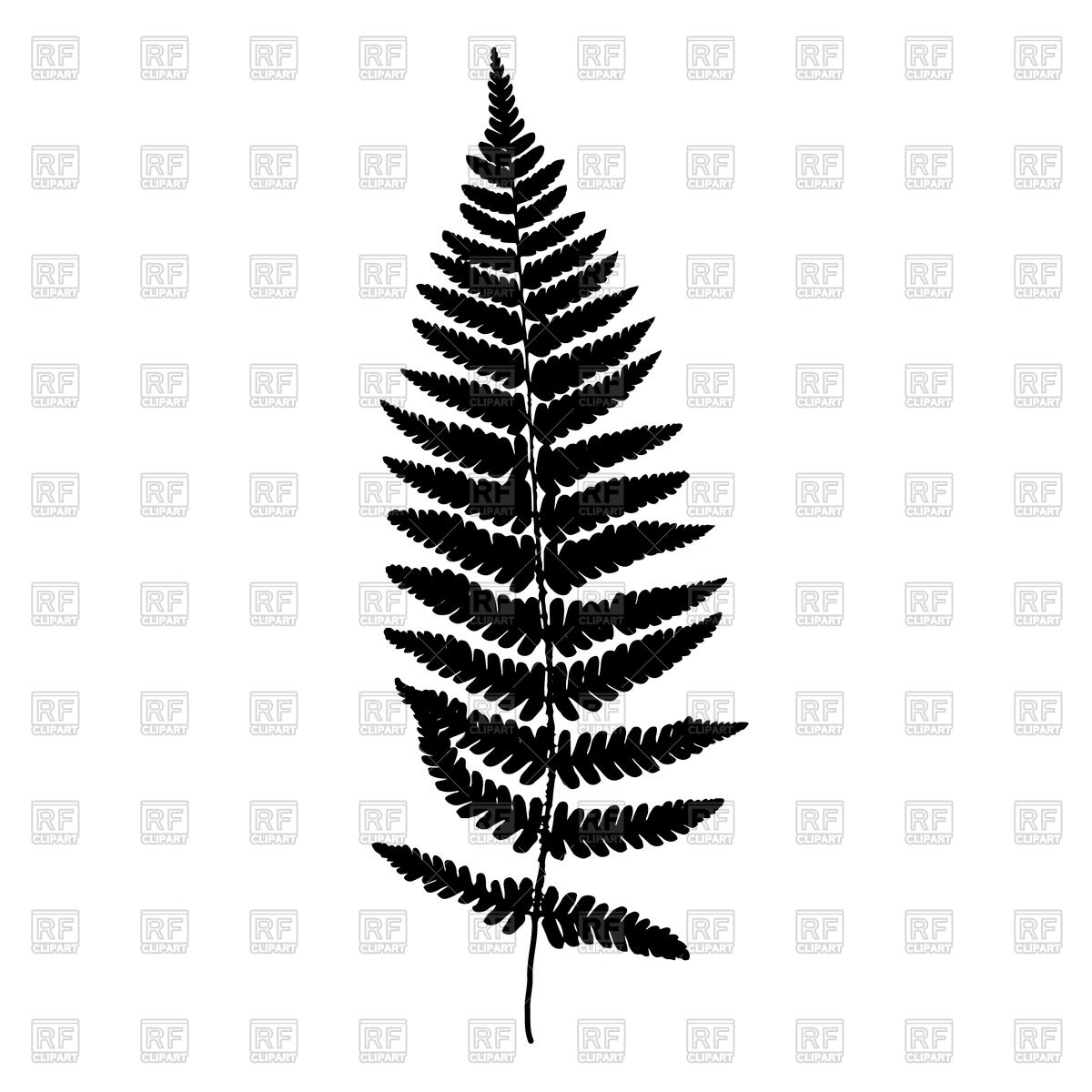 1200x1200 Fern Leaf Royalty Free Vector Clip Art Image