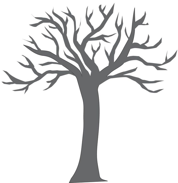 Pine Tree Clipart Black And White Free Download Best Pine Tree