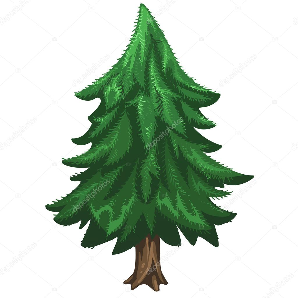Pine Tree Images   Free download best Pine Tree Images on ClipArtMag.com