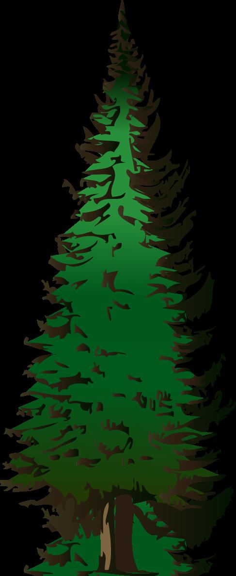 487x1187 Pine Tree Outline Large Pine Tree Clip Art Vector Clip Art
