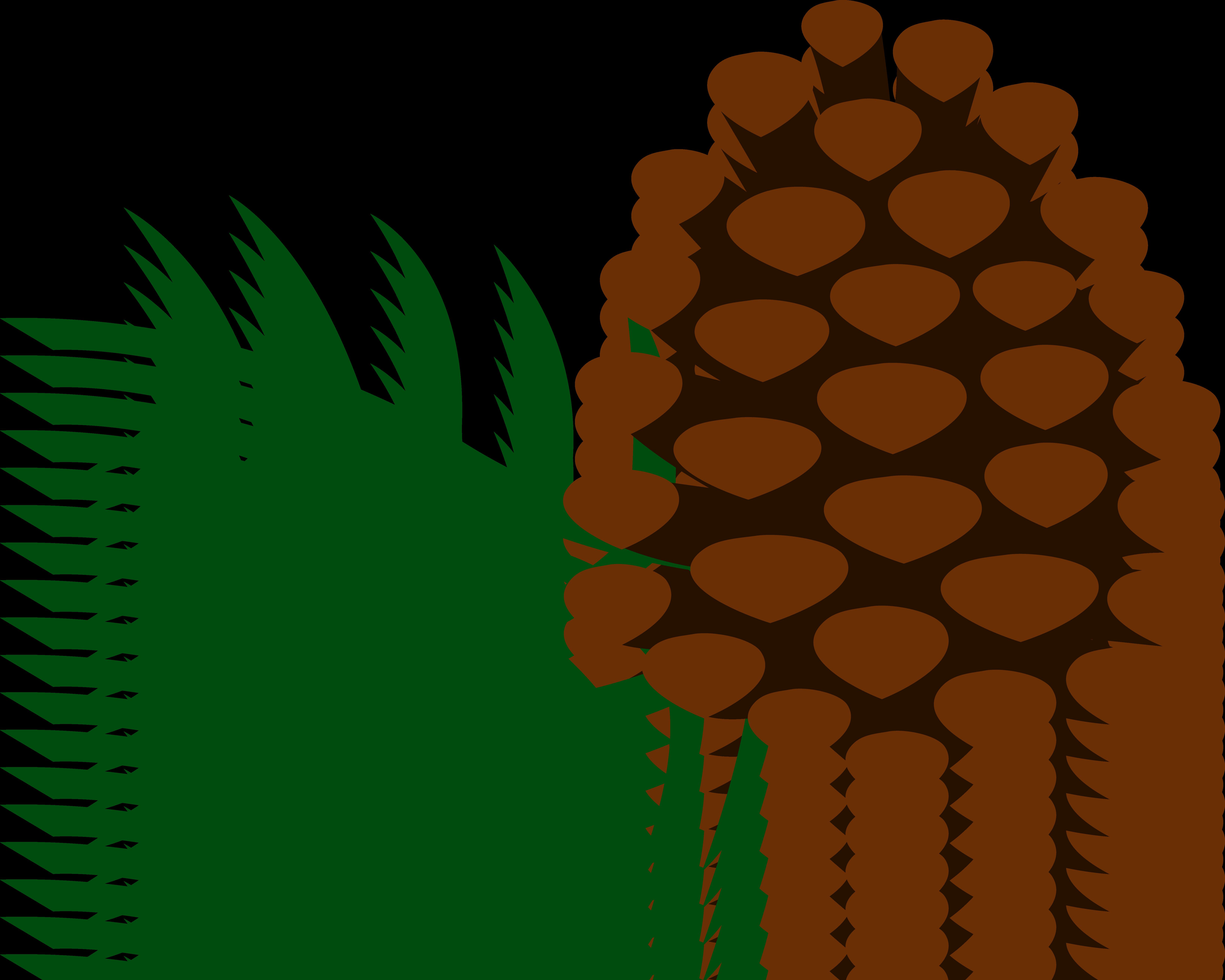 6543x5237 Pine Trees Clip Art