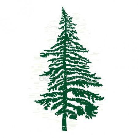 450x450 Pine Tree Silhouette Stock Photos, Royalty Free Pine Tree