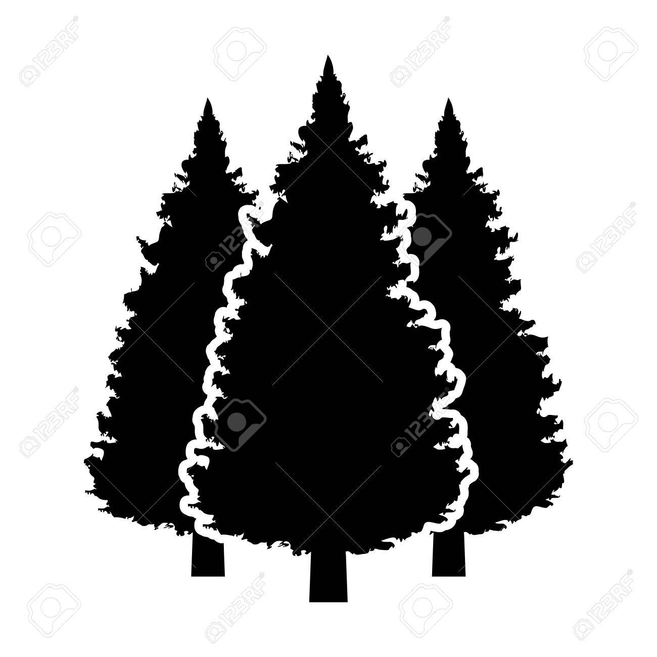 1300x1300 Three Conifer Pine Trees In A Forest Or Park Flat Vector Icon
