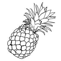 Pineapple Black And White   Free download on ClipArtMag