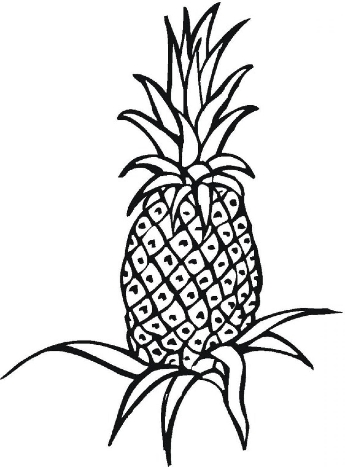 Pineapple Black And White | Free download on ClipArtMag
