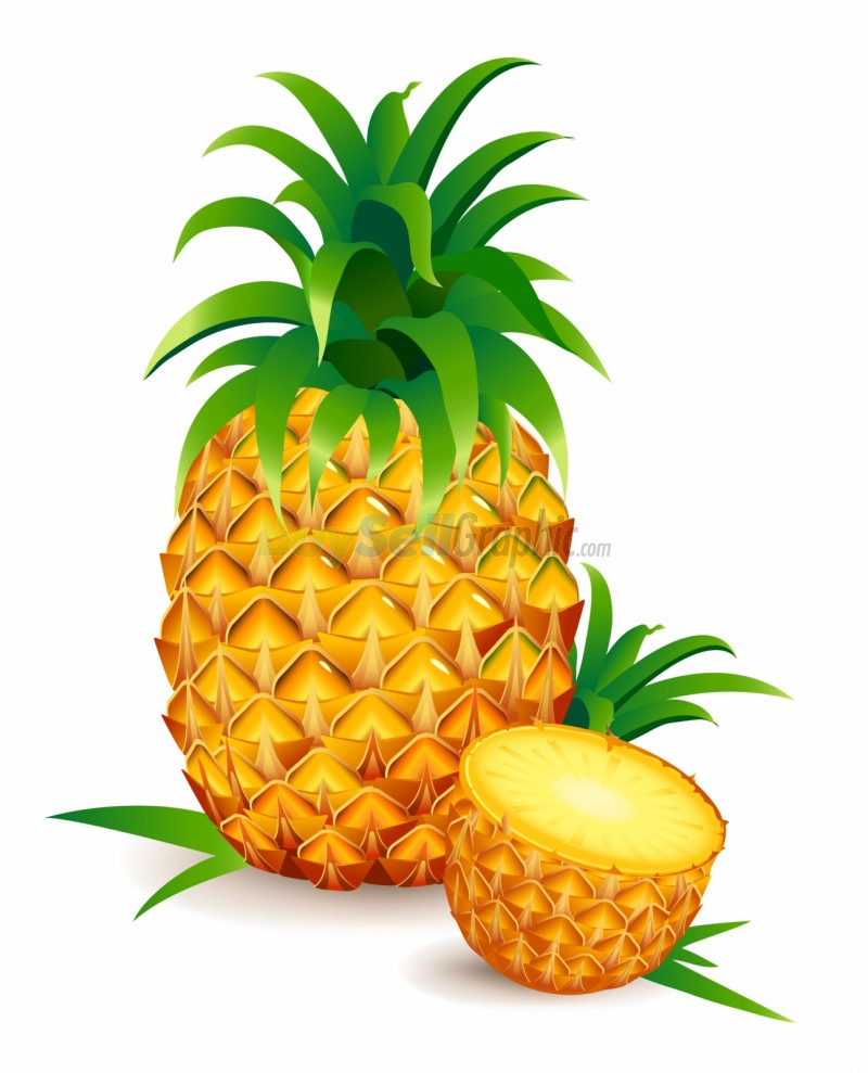 800x989 Pineapple clip art free clipart images clipartwiz