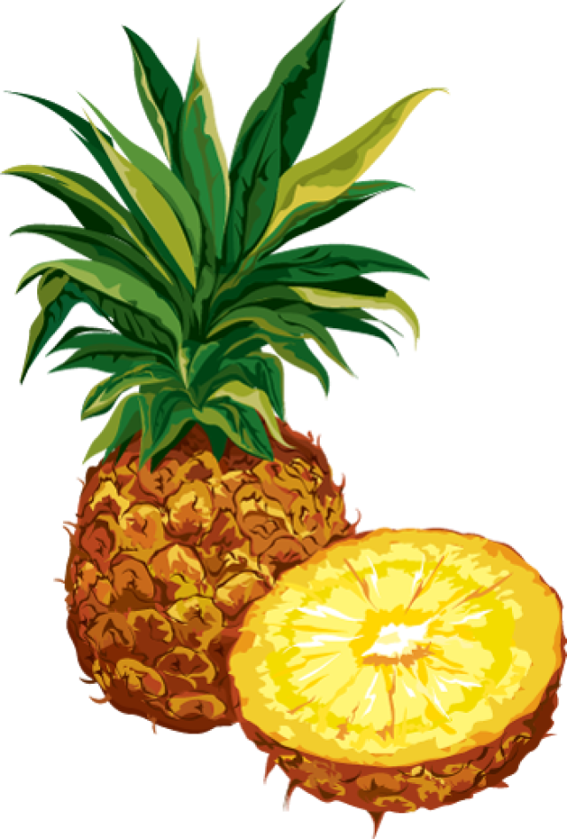 640x946 Pineapple clip art fruit downloadclipart org