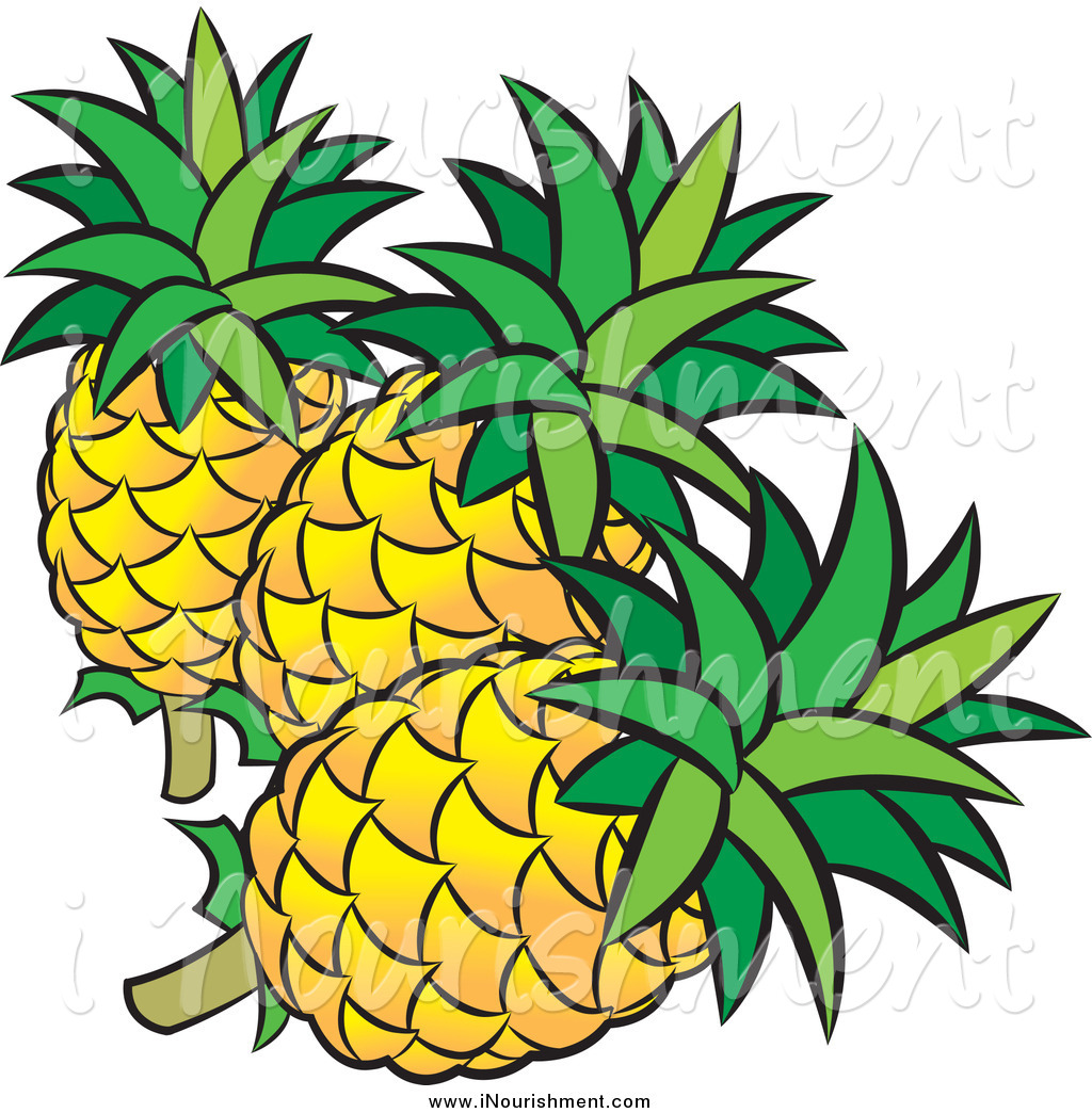 1024x1044 Pineapple Clipart Three
