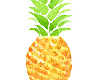 340x270 Top 83 Pineapple Clip Art