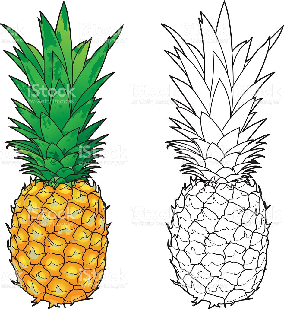 942x1024 Color Clipart Pineapple