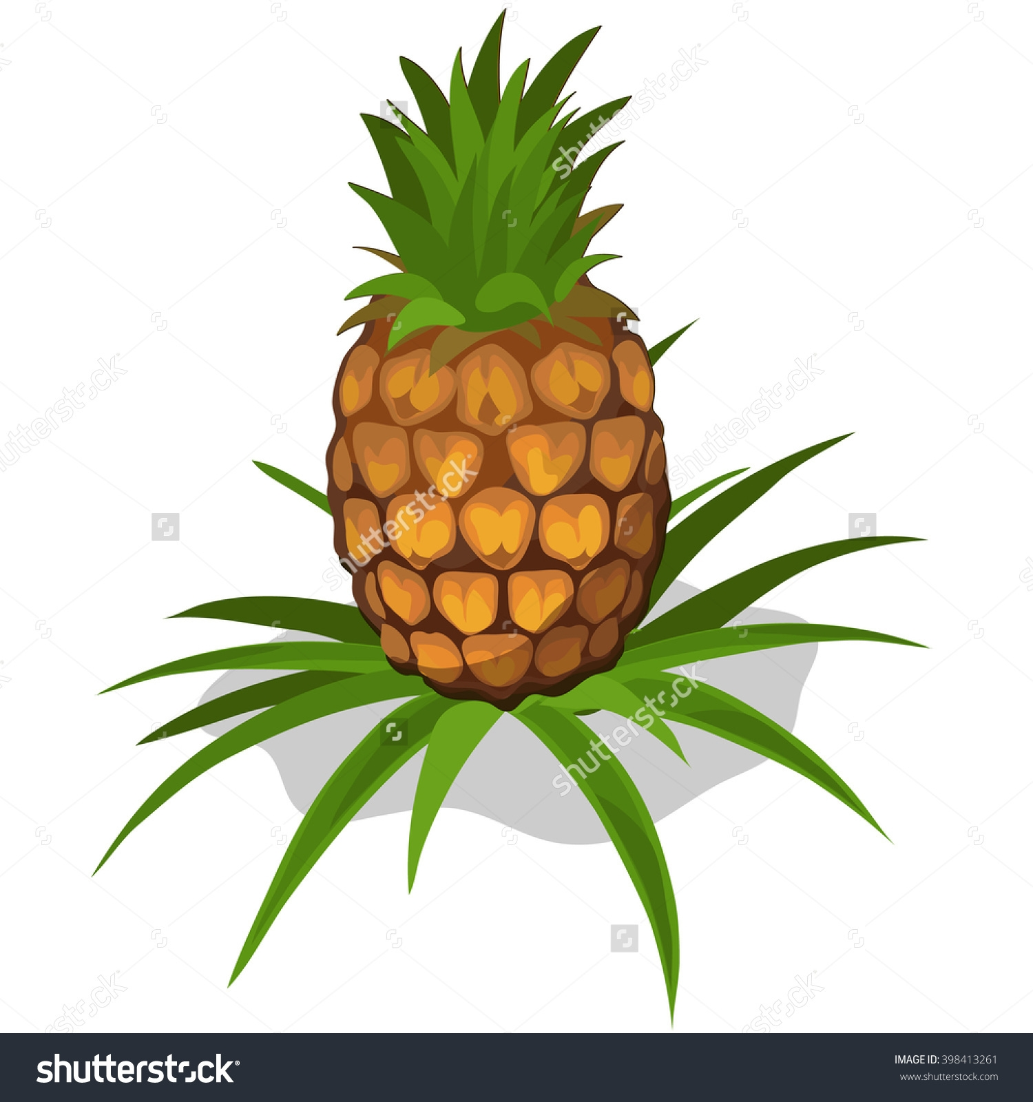 Pineapple Pictures   Free download on ClipArtMag