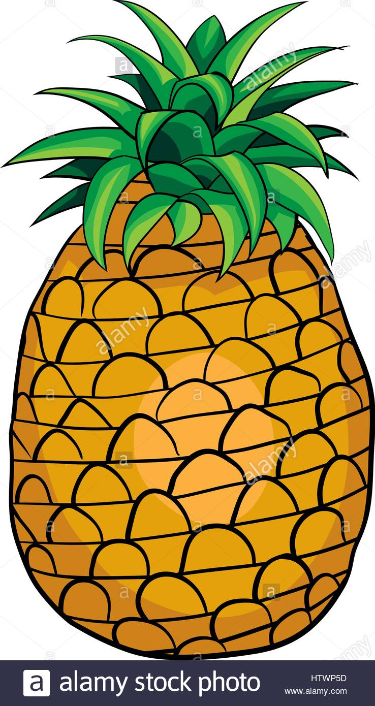 738x1390 Illustration Of Isolated Cartoon Pineapple. Vector Eps 8 Stock