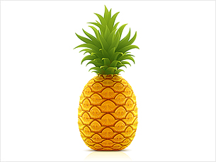 305x230 Vector Clipart Pineapple
