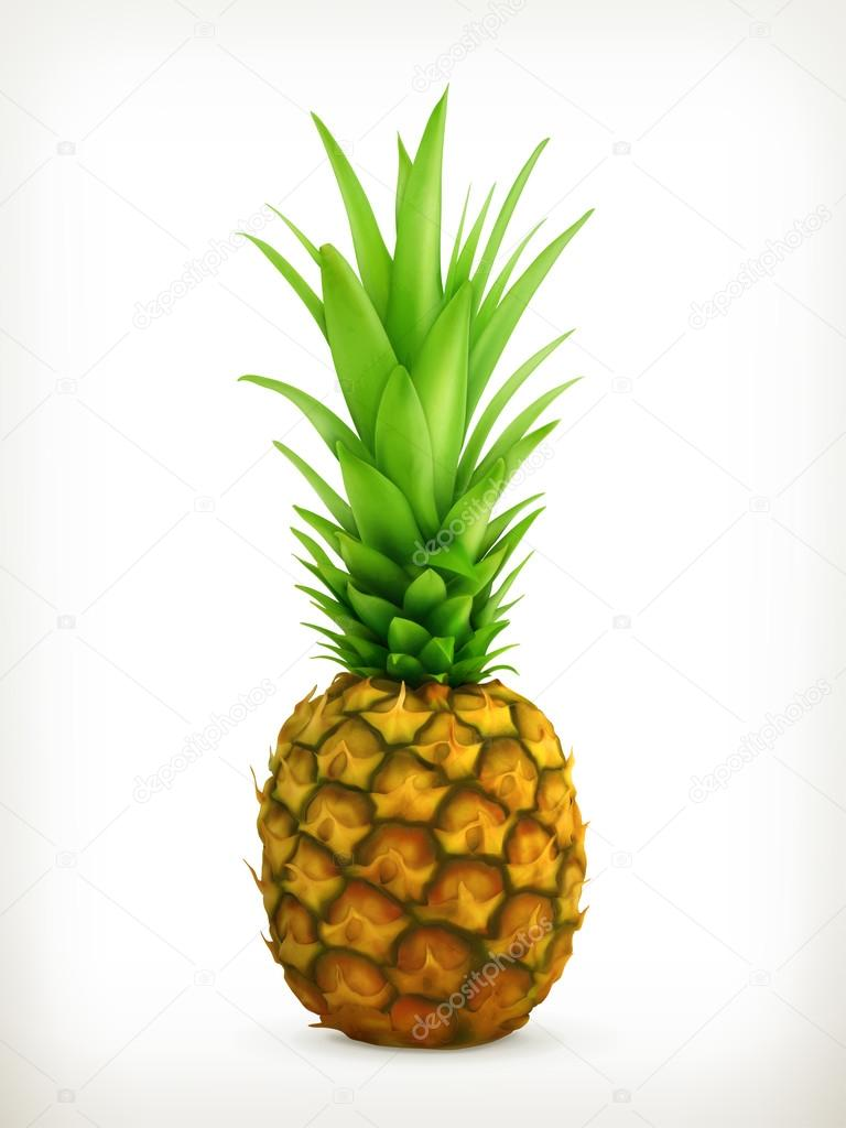 768x1024 Vector Pineapple Background Stock Vectors, Royalty Free Vector