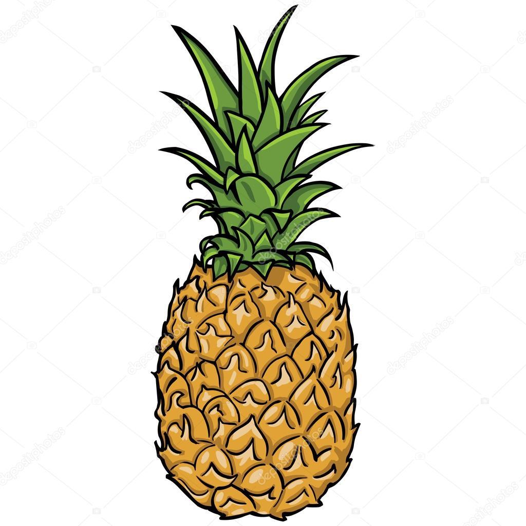 1024x1024 Vector Pineapple Stock Vector Nikiteev