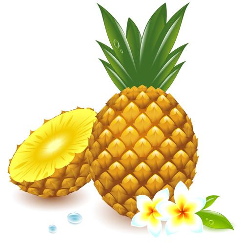 500x500 Fresh Pineapple Vector Graphic