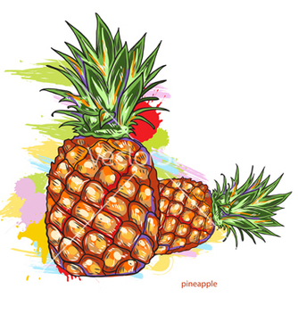 334x352 Free Pineapple Vector Pack Free Vector Download 346857 Cannypic