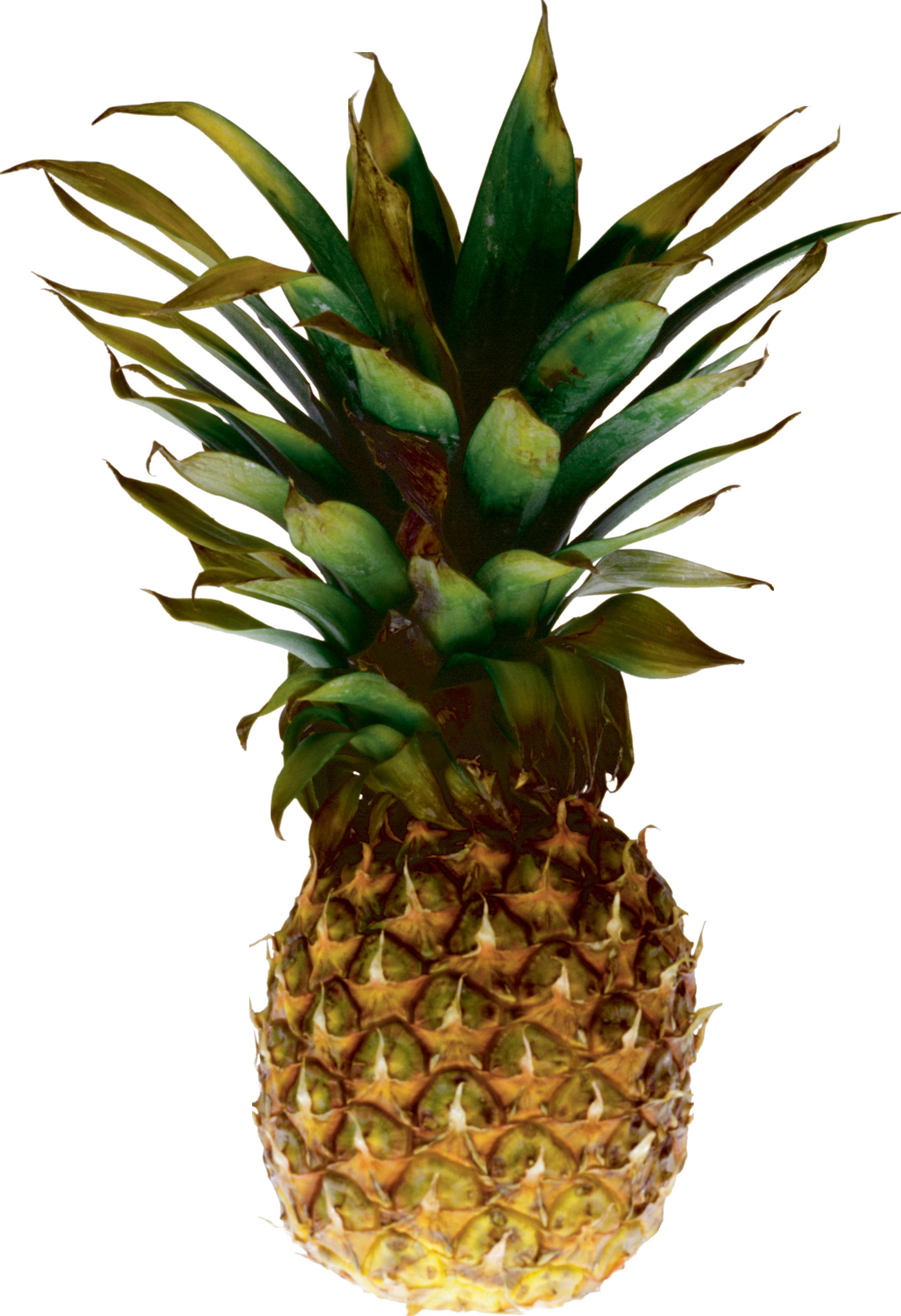 2148x3138 Pineapple Twenty Nine Isolated Stock Photo By