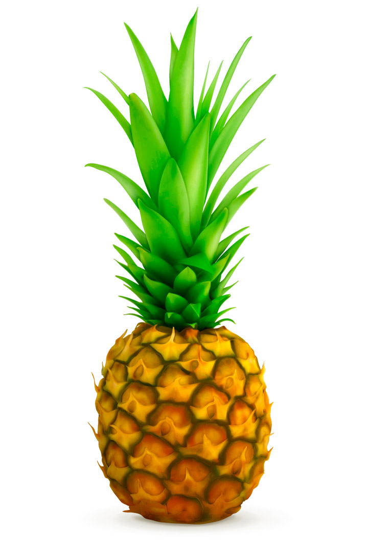 720x1094 Pineapple Vector Free Download Clipart Panda