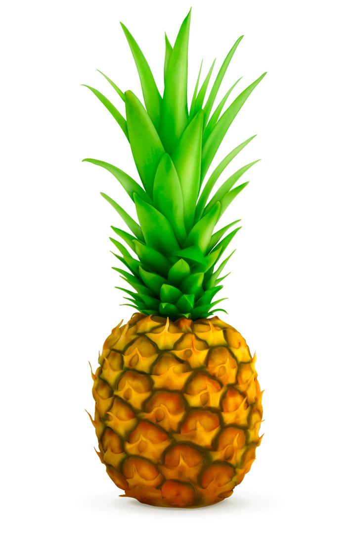 720x1094 Pineapple Vector Free Download Clipart Panda