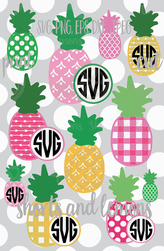 570x869 Pineapple Svg Pineapple Vector Pineapple Frame Pineapple