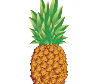 336x280 Pineapple Vector Art